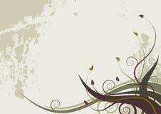 抽象背景花卉grunge样式通知 免版税库存图片