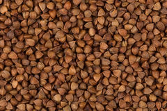 抽象背景荞麦食物纹理 库存照片