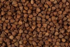 抽象背景荞麦食物纹理 图库摄影