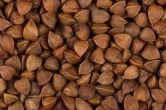 抽象背景荞麦食物纹理 库存图片