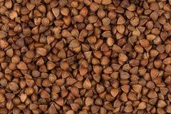 抽象背景荞麦食物纹理 免版税库存照片