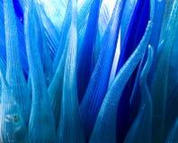 抽象背景蓝色通知 免版税库存图片
