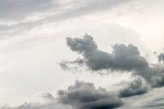 抽象背景,黑暗的云彩看起来象一条跳跃的狗 库存图片