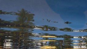 抽象背景:在水坑在热带,水蓝天,散开云彩,绿色棕榈的表面的反射,染黄a 库存照片