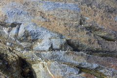 抽象背景 在壳的石头 库存图片