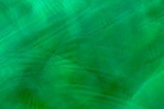 抽象背景绿色密林 库存照片
