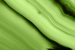 抽象背景-绿色玛瑙切片矿物宏指令PANTONE绿叶 免版税库存照片