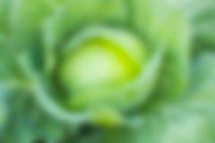抽象背景bokeh绿色例证光向量 免版税库存照片