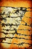 抽象背景grunge纹理 库存图片