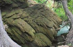 抽象自然形成, Krka河,克罗地亚 图库摄影