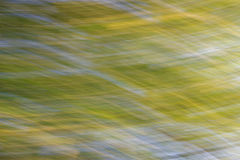 抽象自然绿色,黄色和蓝色背景 库存图片