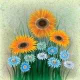 抽象花卉例证 免版税库存照片
