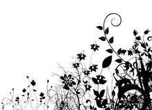 抽象花卉向量 图库摄影