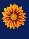 抽象花卉场面 免版税库存图片