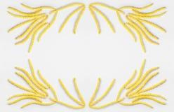 抽象花卉构成,黄色框架开花在灰色背景的雏菊耳环与文本的空间 库存图片