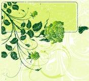抽象花卉框架 图库摄影