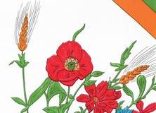 抽象花卉背景,夏天 库存照片