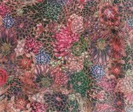 抽象花卉背景,装饰墙壁 免版税库存照片