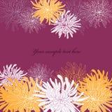 抽象花卉背景 皇族释放例证