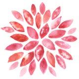 抽象花卉水彩绘画 库存图片