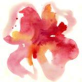 抽象花卉水彩绘画 图库摄影