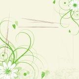 抽象花卉 免版税图库摄影