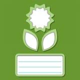 抽象花卡片绿色 库存图片