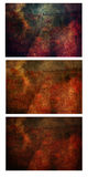 抽象花纹理三重奏 库存图片