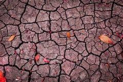 抽象葡萄酒红色口气裂缝纹理背景 库存图片