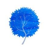 抽象蓝色冬天树 免版税图库摄影