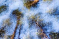 抽象蓝色和绿色被弄脏的背景 背景森林本质木雪的结构树 免版税库存图片