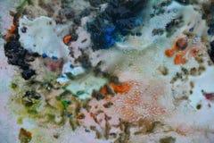 抽象蓝色橙色混合油漆颜色和颜色 抽象独特的湿油漆背景 绘画斑点 免版税库存图片