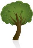 抽象设计结构树 免版税图库摄影