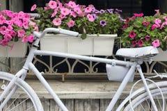 抽象设计花卉例证向量 库存图片