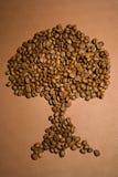 抽象豆咖啡树 免版税图库摄影