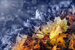 抽象转折从秋天到冬时 免版税库存照片