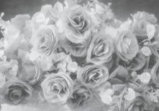 抽象软的样式银玫瑰色花 库存图片