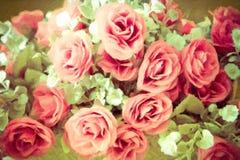 抽象软的焦点美丽的玫瑰色花 库存图片