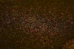 抽象金黄在卡片的棕色背景, invitati飞溅 库存照片
