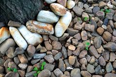 抽象难看的东西背景-岩石、树干和绿色杂草 免版税图库摄影