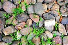 抽象难看的东西背景-岩石和绿色杂草 免版税库存照片