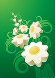抽象雏菊背景。 库存图片