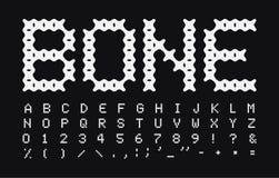 抽象骨头传染媒介信件和数字集合 白色简单的大写样式传染媒介拉丁字母 小狗的字体吃 向量例证