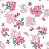 抽象高雅无缝的样式有花卉背景 免版税图库摄影