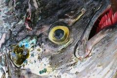 抽象鱼 免版税库存照片