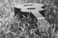 抽象黑白图象关闭乐器在绿草的尤克里里琴吉他 免版税库存照片