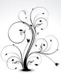 抽象黑色花卉使光滑 图库摄影