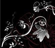 抽象黑色花卉白色 免版税库存照片