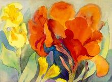 抽象水彩原始的绘画五颜六色canna百合开花 库存照片