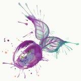 抽象水彩绘画李子果子 图库摄影